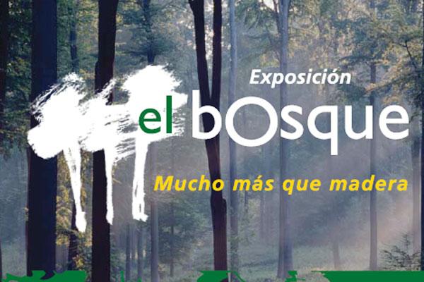 Asturias con niños: El bosque, mucho más que madera, exposición en La Losa