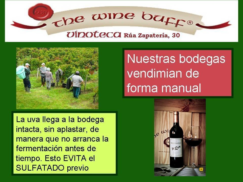 Web fotos del muro de the wine buff vendimia manual