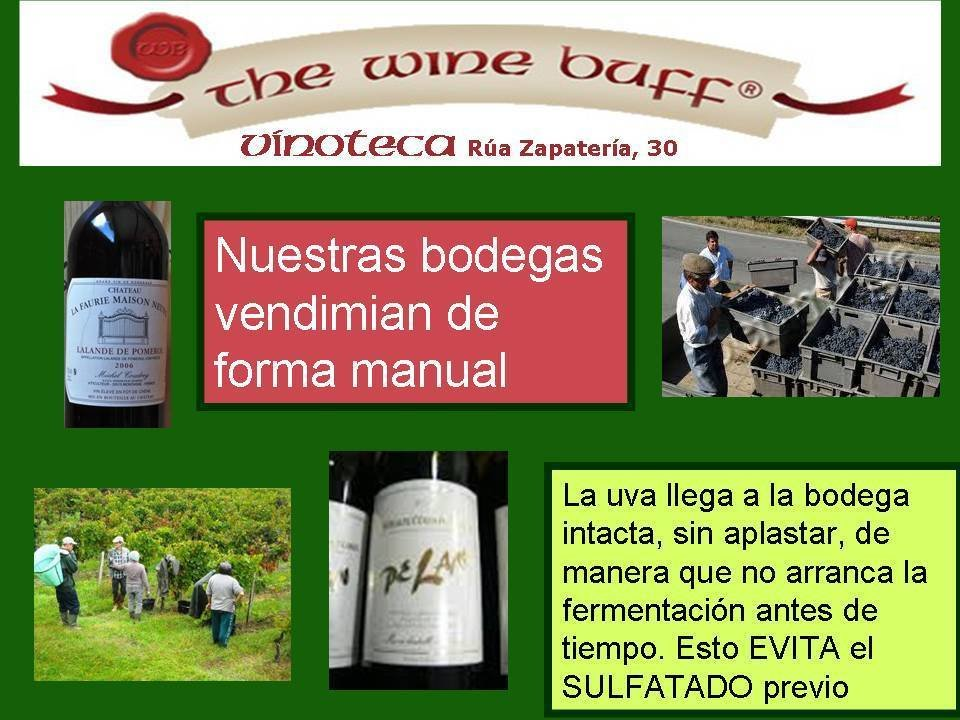 Web fotos del muro de the wine buff 21 sept