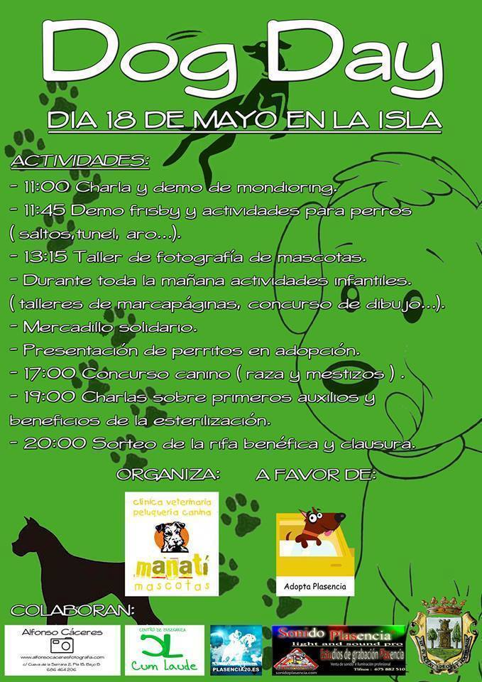 Normal dog day dia del perro en plasencia