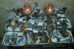 Semana micologica restaurante casa juan plasencia semana micologica en restaurante casa juan plasenc dam preview