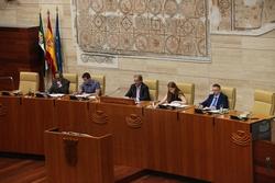 Constitucion de la asamblea de extremadura para la ix legislatura img 1847 dam preview