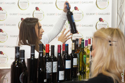 Salon del vino y la aceituna iberovinac 2014 almendralejo 04112014 img 3563 dam preview