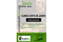 11 11 2015 curso iniciacion corte de jamon para aprohex asociacion de los profesionales de la hostel dam preview