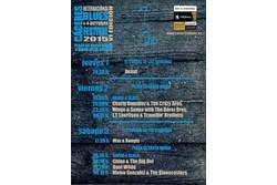 Programa del vi caceres blues festival 2015 programa2015 copia dam preview