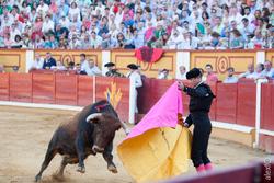 Jose maria manzanares toros badajoz feria de san juan 2015 44x1527 dam preview