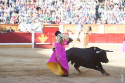 Alejandro talavante toros badajoz san juan 2015 44x0667 1 dam preview