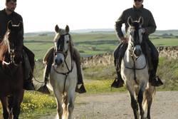 Actividades barbancho rutas a caballo 1926178 610013039066952 134230838 o dam preview