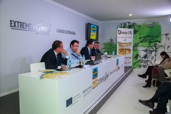 25 aniversario de la feria del toro de olivenza en fitur 2015 img 7546 dam preview