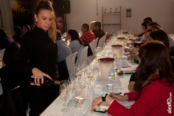 Master class cata del wset wine spirit education trust iberovinac 2014 2014 11 04 master class catas dam preview