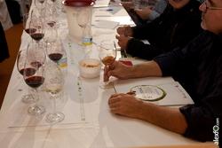 Cata de iberica de vinos de extremadura y portugal iberovinac 2014 2014 11 04 cata de vino0001 dam preview