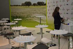 Cata de aceite iberovinac 2014 salon del vino y la aceituna 2014 11 04 cata de aceite 1 dam preview