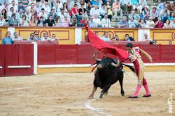 Santiago ambel posada toros san juan 2014 santiago ambel posada toros san juan 2014 santiago ambel p dam preview