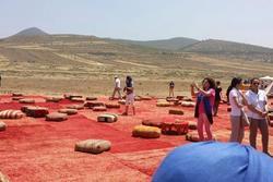 Viaje a marrakech con themomix viaje a marrakech con themomix dam preview