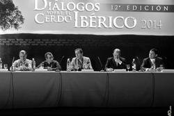 Congreso dialogos sobre el cerdo iberico 2014 syva laboratorios fregenal de la sierra congreso dialo dam preview