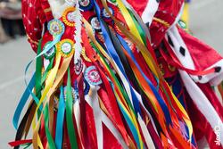 Comparsa infectos acelerados desfile de comparsas carnaval badajoz 2014 comparsa infectos acelerados dam preview