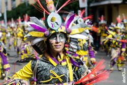 Comparsa donde vamos la liamos desfile de comparsas carnaval de badajoz 2014 dca 4748 comparsa donde dam preview