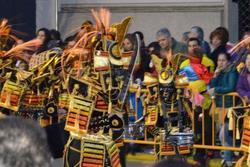 Desfile de comparsas desfile de comparsas dam preview