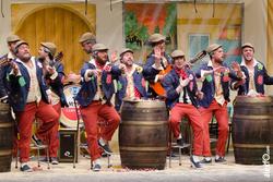 Murga a contragolpe concurso de murgas carnaval badajoz 2014 dca 1331 dot jpg dam preview