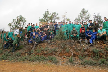 Reforestacion gata normal 3 2