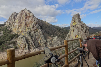 Tour caceres parque nacional de monfrague dsc04992 normal 3 2