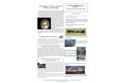 Newsletter atumon 33b57 fe29 dam preview