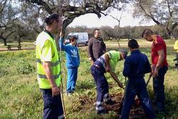 Plantacion de arboles en tres arroyos colaborando con los chicos en la siembra dam preview