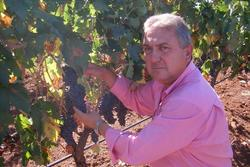 Vinicola guadiana francisco moreno camacho vigua basangus dam preview
