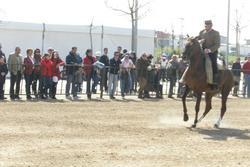 Feria de almendralejo 15a79 2042 dam preview