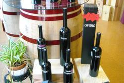 Cata de vino bodegas bernal garcia chic 159ae 060f dam preview