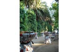 Hacienda jardin la vara buffet paseo de palmeras dam preview