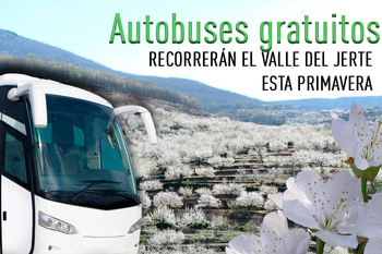 Autobuses valle del jerte cerezo en flor normal 3 2