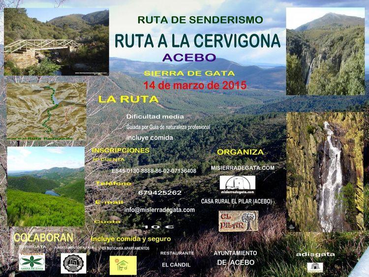 Ruta De Senderismo A La Cervigona En Acebo El Sábado 14 De Marzo Te Esperamos Para Ver Una De Las Rutas Más Bonitas Del Norte De Extremadura Aire Libre En Acebo