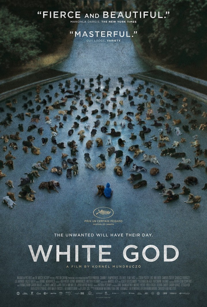Normal cine club white god coc de badajoz