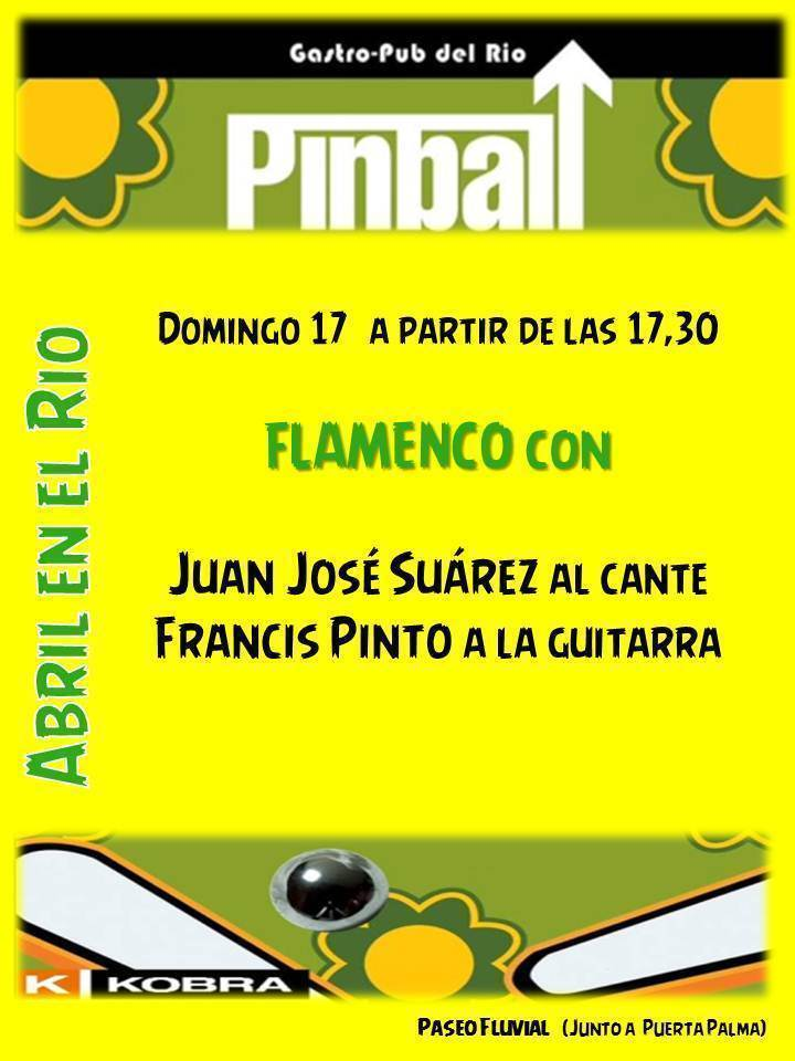 Normal flamenco en el rio con pinball