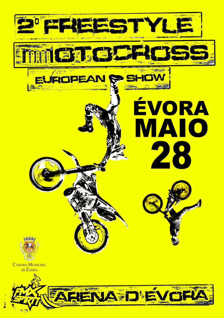 Normal 2 freestyle motocross