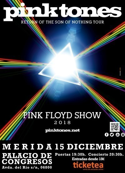 Normal concierto pink tones a pink floy show merida 14