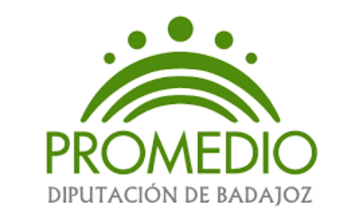 Normal promedio diputacion de badajoz