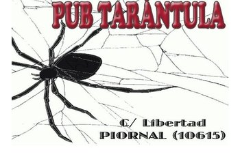 Normal pub tarantula