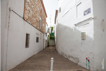 Normal callejita del clavel en zafra