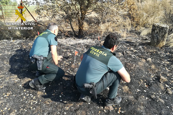 Investigacion incendios torrejoncillo copia normal 3 2